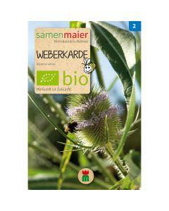 Bio Weberkarde - Saatgut für zirka 20 Pflanzen